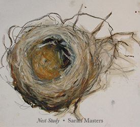 Nest Study drawing